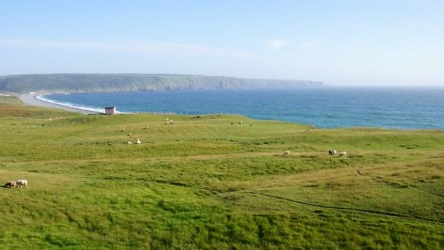 The Irish Loop