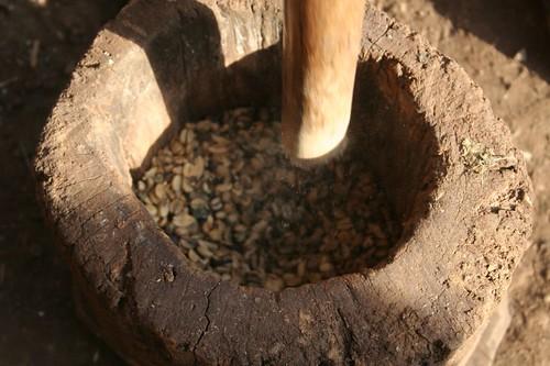 Grinding fresh coffee beans, Datanli Diablo Reserve