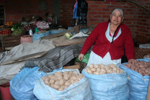 woman selling veggies -- love of Bolivia, Entre Rios