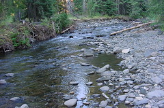 Crow Creek