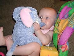Mmmmm, yummy elephant