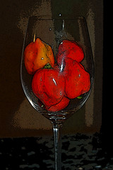 Habaneros in a Glass