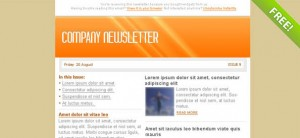 Orange Email Marketing Newsletter Template