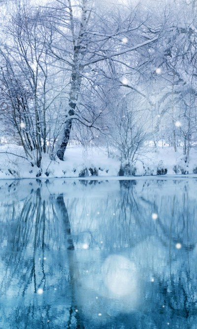 Free Winter Snowfall Live Wallpaper 2 APK Download For Android | GetJar
