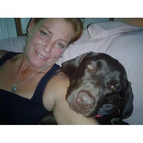 Medium Crop Of Katie Brown Dog