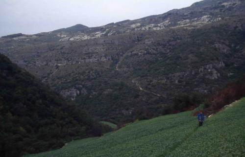 Dans la montagne alaouite.