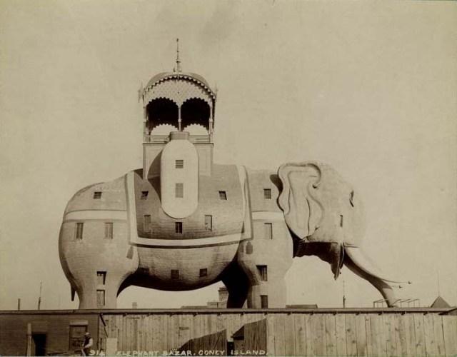 elephantinecolossus