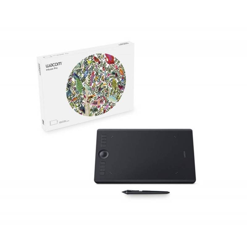 Large Of Intuos Pro Driver