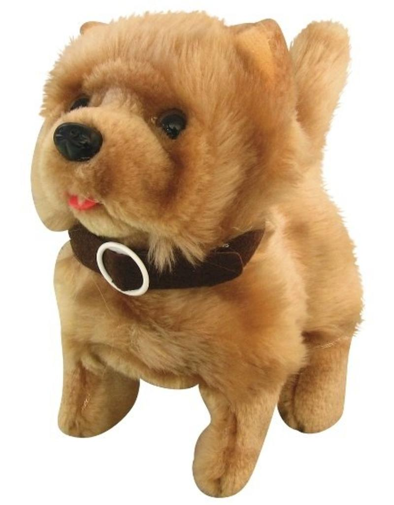 Large Of Baby Chow Chow