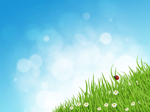 green grass nature background web backgrounds