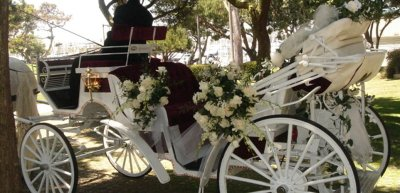 Cinderella Wedding Carriage Rental CA | Cindy Cinderella ...