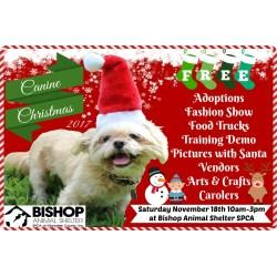 Small Crop Of Bishop Animal Shelter