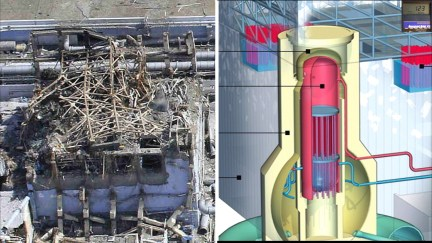 Fukushima Story 476.jpg