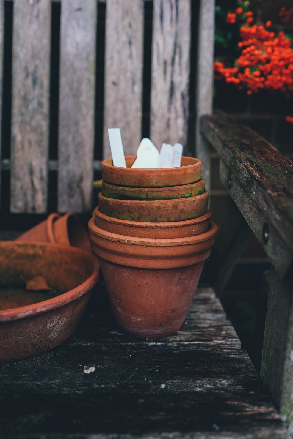 Terracotta pots on a wet day