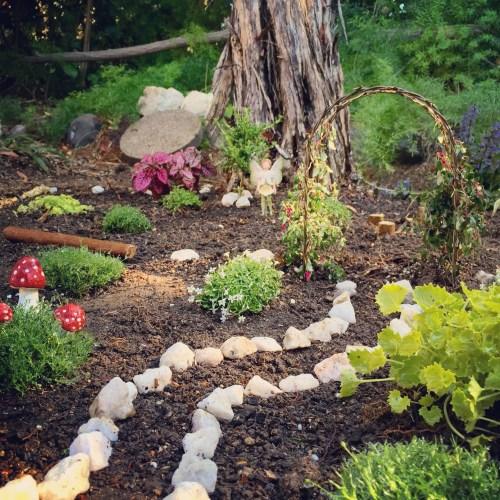 Medium Crop Of Natural Fairy Garden