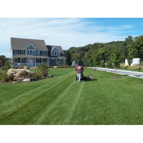 Medium Crop Of Big Country Lawn And Landscape