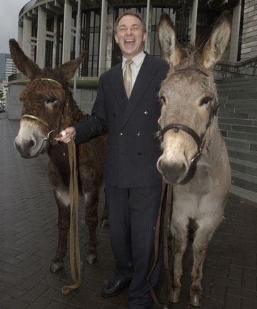 An Ass and two donkeys