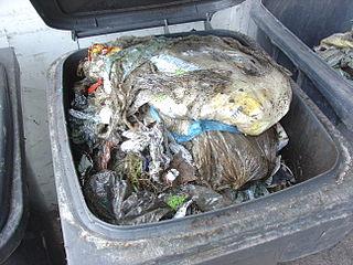 Mülltrennung: Sachsen erreicht zweithöchsten Anteil in Deutschland