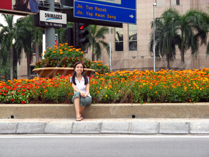 Flowers by the Roadside