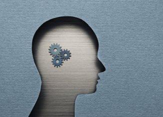 cool neuroscience careers