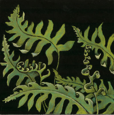 Fernalicious, a pastel by Stephanie Thomas Berry