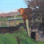 cattle on the bridge