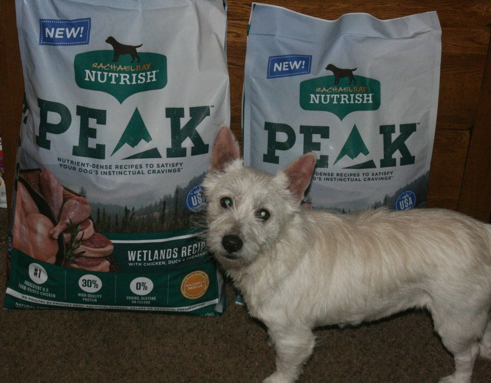 Chewy Influencer: 30 Day Rachael Ray Nutrish Peak Dog Food Challenge First Thoughts