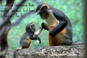 to receive forgiveness