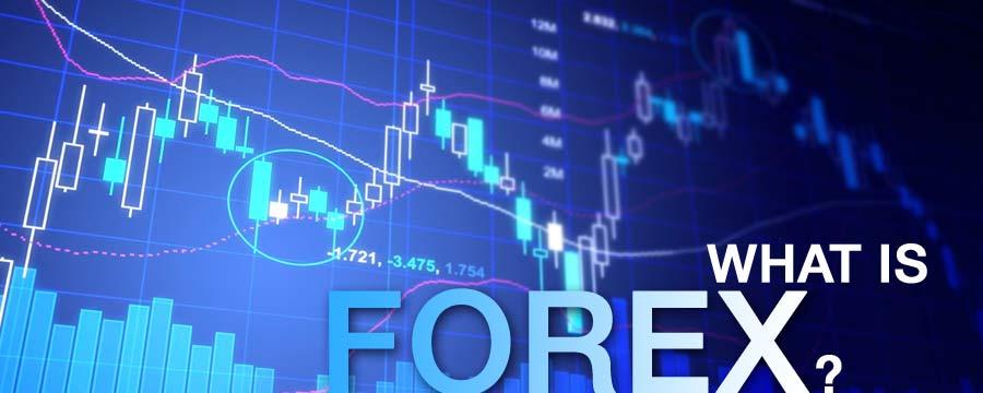 Forex trading network marketing