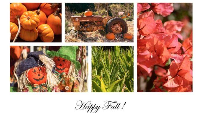 Happy Fall greeting card