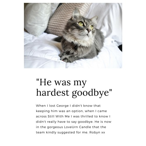 Medium Crop Of What To Say When Someone Loses A Pet