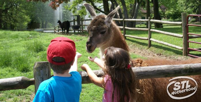 grants farm lama