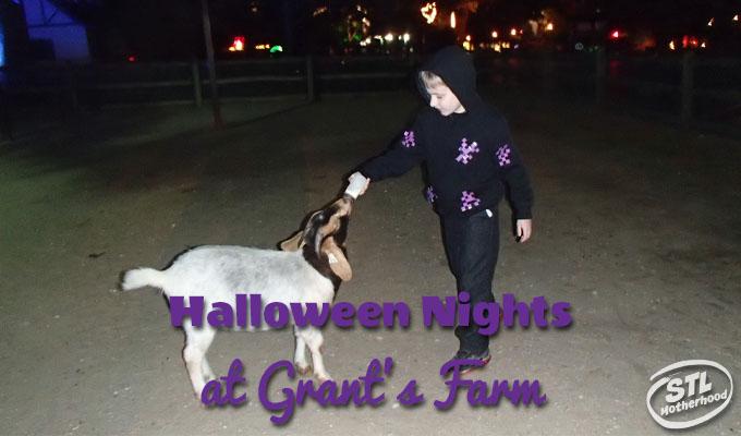 Halloween nights at Grant's Farm
