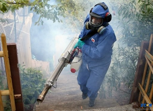 Fogging continues as part of the fight contain the breeding of mosquitos  that can spread such diseases such as dengue and chikungunya.