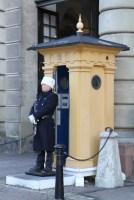 Дворцовая площадь, Смена караула у Королевского дворца в Стокгольме, посмотреть на экскурсии с русским гидом по Стокгольму