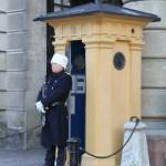 караул у Королевского дворца в Стокгольме