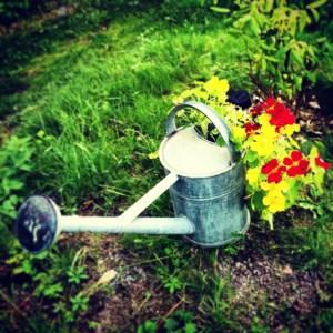 шведский дизайн лейка цветочный горшок