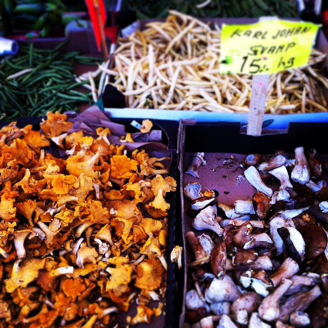 грибы в стокгольме