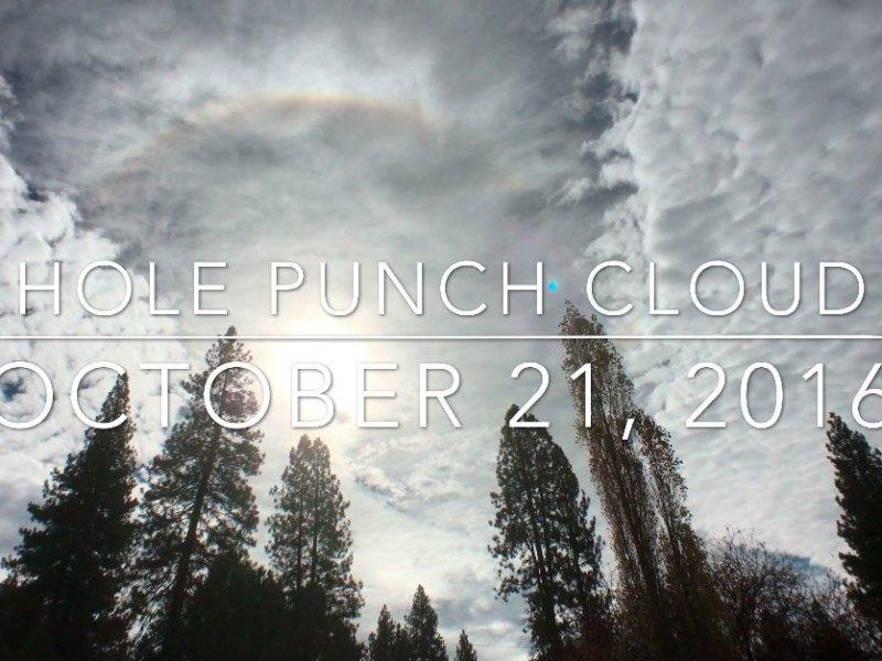 Hole punch cloud and #incrediblyraresundog
