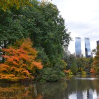 Autumn in New York: My Expat Observations