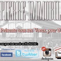 St Pierre Immobilier Voeux 2014