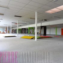 location grand local commercial a chauray st pierre immobilier niort