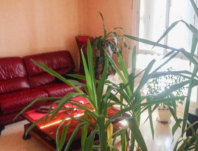 appartement-t2-petit-leclerc-niort-7