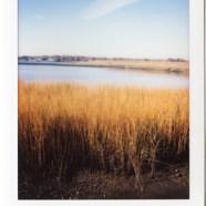 Instant Photographs Series