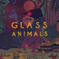 Glass-Animal-Pools