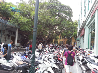 Motorbike Jungle Hanoi