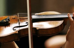 Violinist-002