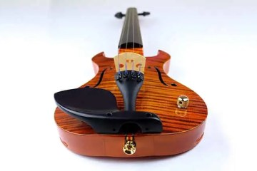 Wood Violins' the 'Legend' 4-string electric violin