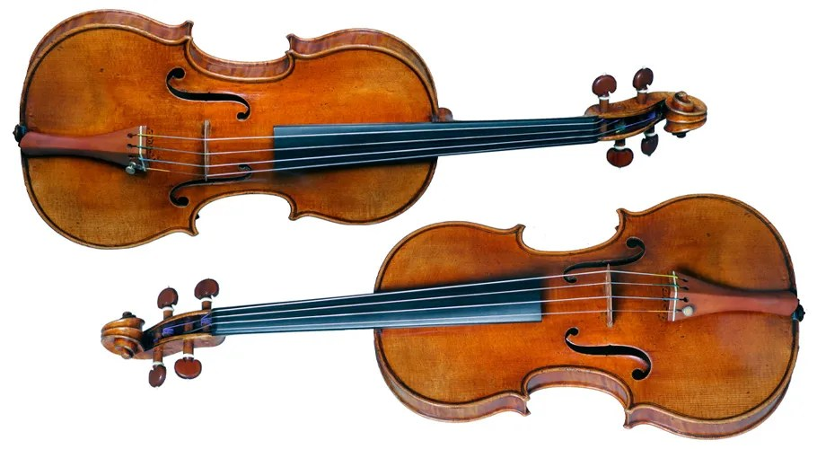 Violin Vs Fiddle