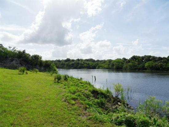 Homes and Land for Sale in Palm City Farms